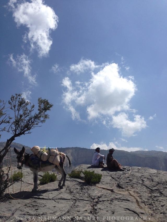 Jebel Shams 1 WM