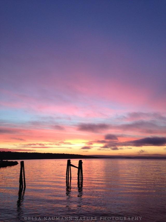 Lysaker Sunrise WM 2