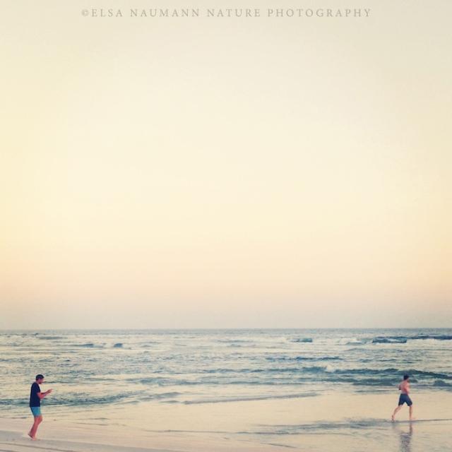 Salalah Beach WM